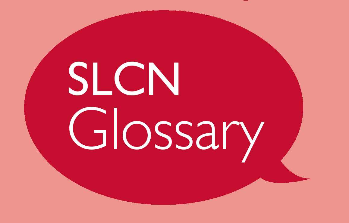 SLCN Glossary Part 2: Speech Delay vs. Speech Disorder