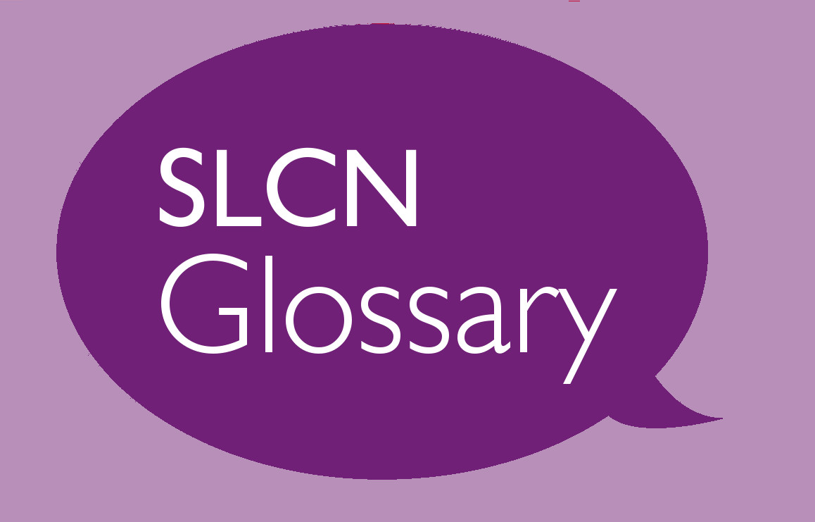 SLCN Glossary Part 3: Delay and Disorder in the context of Language Development