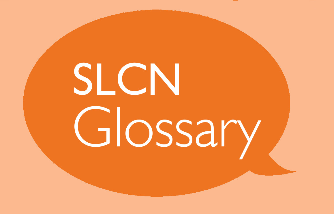 SLCN Glossary Part 4: Vocabulary and Semantic Skills